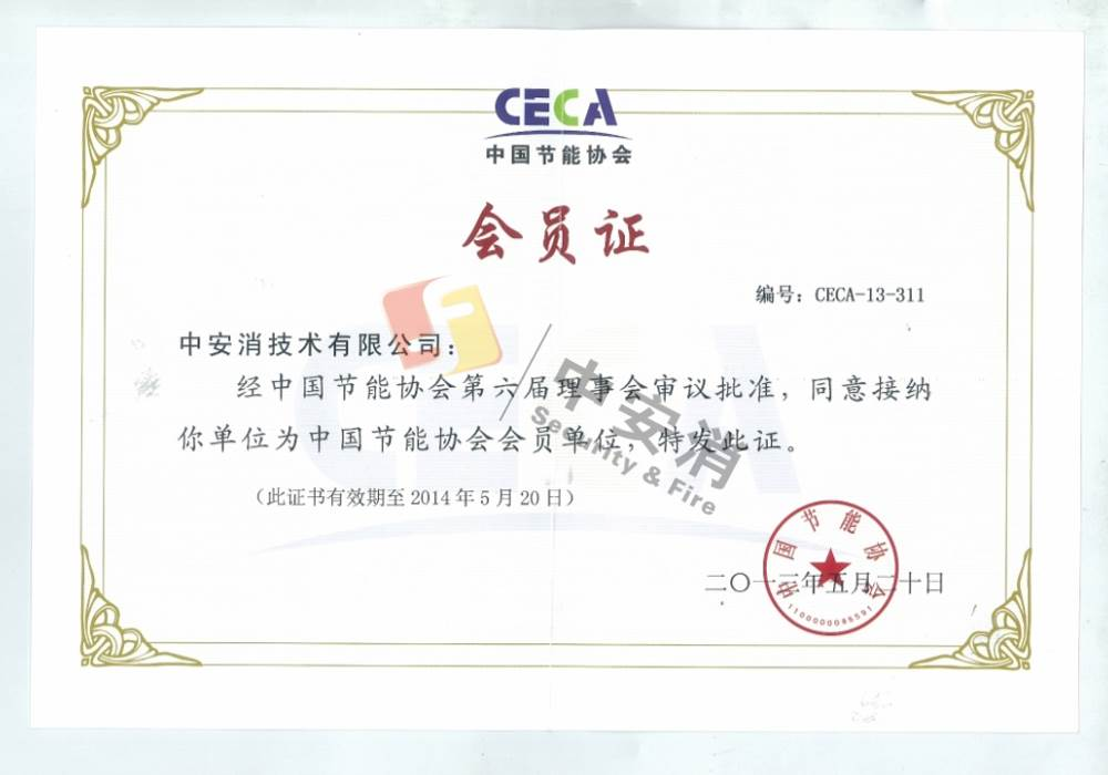 Director of China Energy Conservation Association