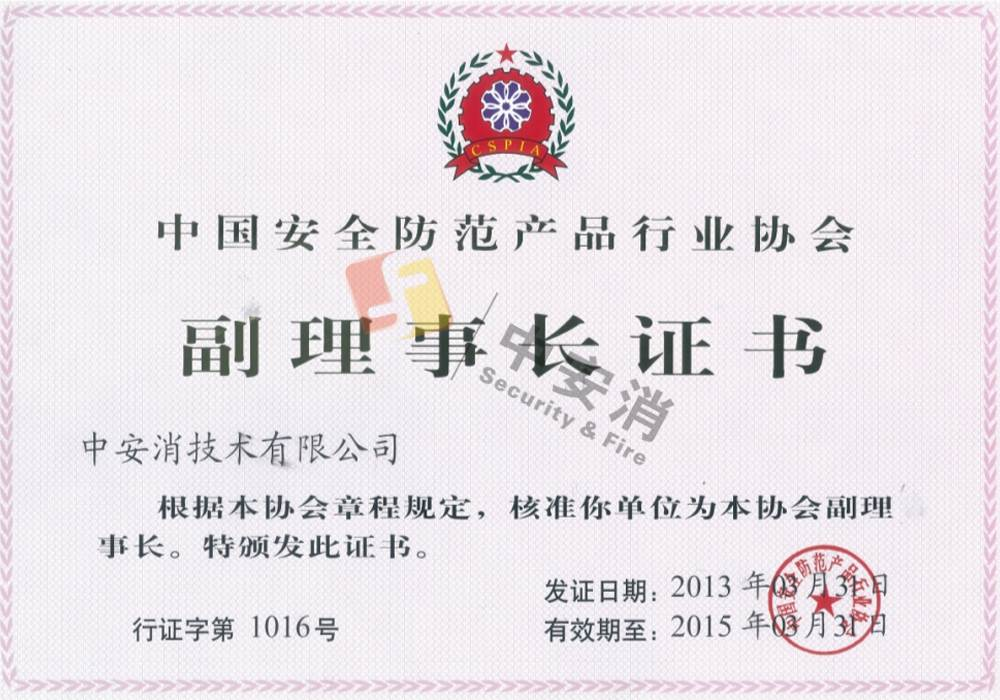 Deputy Chairman of China Security and Protection Industry Association
